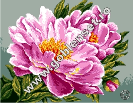 produse 53e238d97c7e3ce46b940987b9cae262