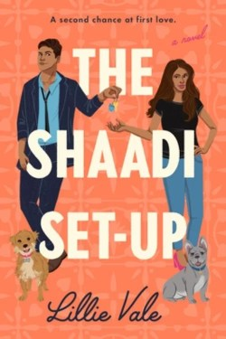 The Shaadi Set-Up By Lillie Vale Is A Thoughtfully Entertaining Debut
