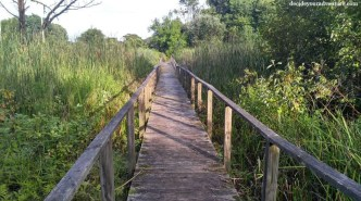 Great Flats Nature Trail