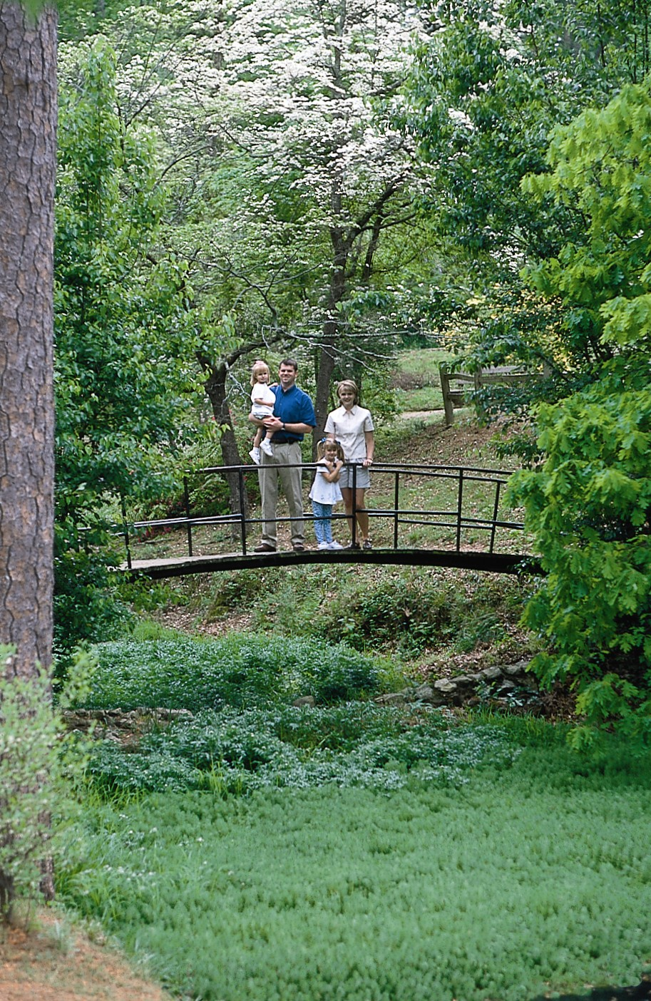 Places to Visit in Georgia  The Academy Springs Park Places to visit in Georgia  Academy Springs Park is a relaxing thing to do  near