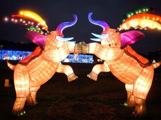 Pink Elephants at Taipei Lantern Festival