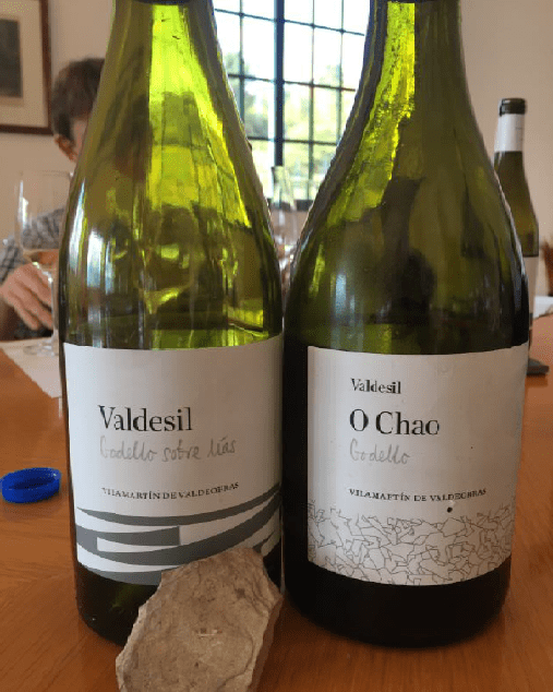 Stylish bottles with soil designs at Valdesil, Valdeorras