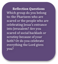 01 PS Reflection Question-1