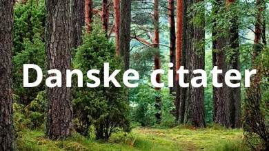 Photo of Danske citater