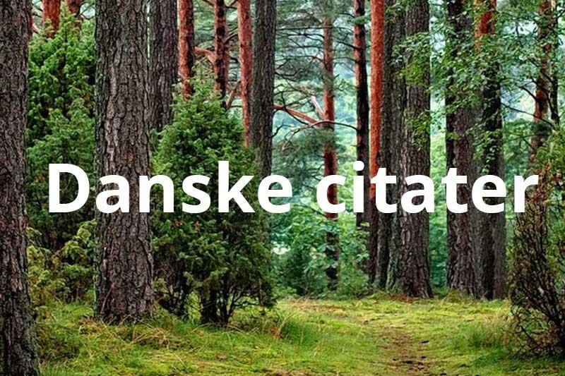 danske citater