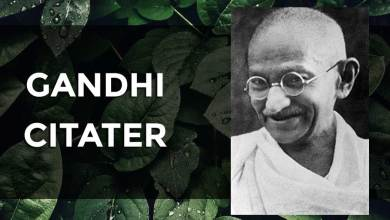 Photo of Gandhi citater
