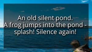 haiku digt 2