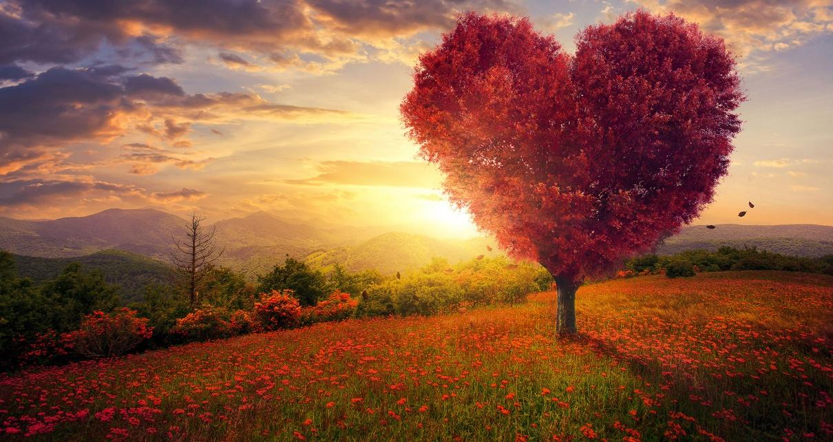 Image result for love of god