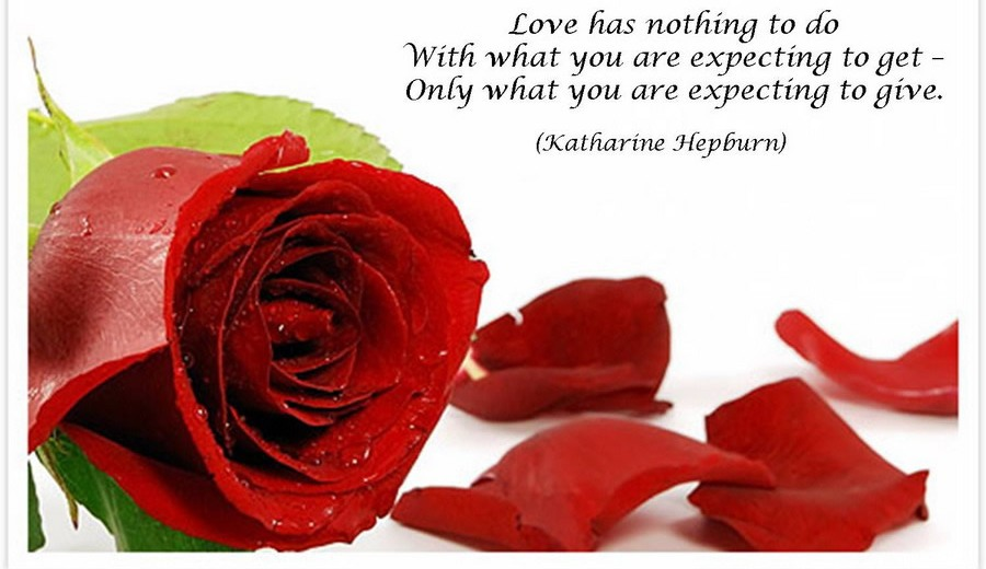 34 AMAZING RED ROSE LOVE QUOTES Godfather Style