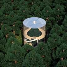 Almassov's tubular glass tree house, which may go into production next year, is a four-story home built around a tree.