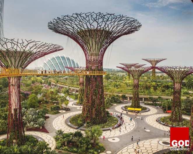 """Symbol of Singapore and its efforts to promote green space, these """"Supertrees"""