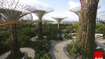Garden of Eden is in Singapore!