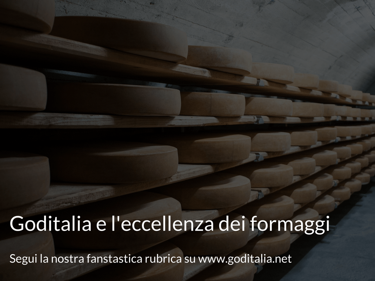 formaggio Monte Veronese di malga dop. Monte veronese stagionato