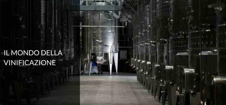 La fermentazione del vino: cappello, svinatura e follatura