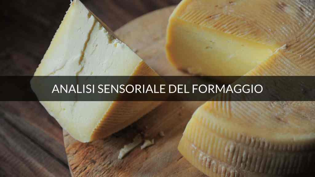 Descrittori finali nell'analisi sensoriale del formaggio