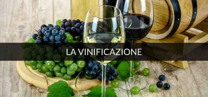 L'anidride carbonica l'alleato del vino frizzante