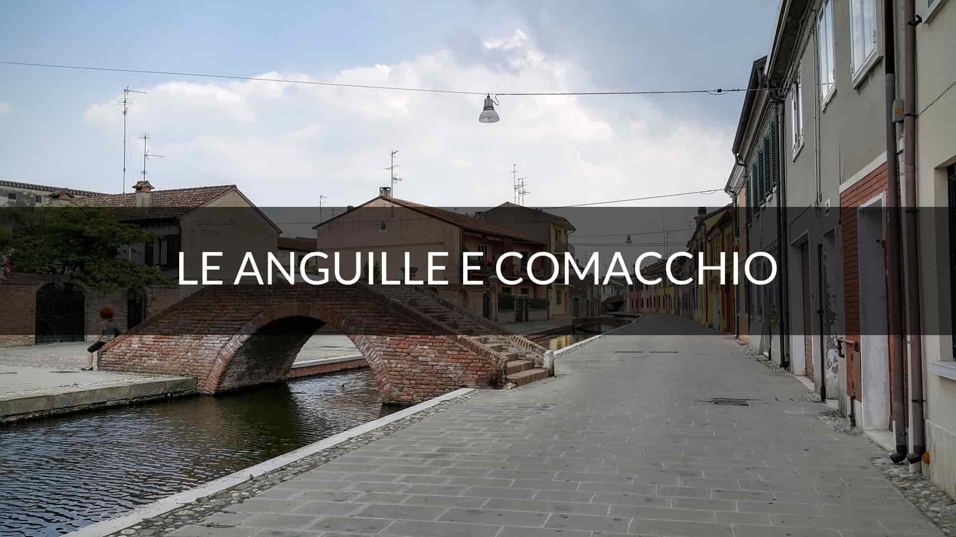 storia delle anguille marinate e delle valli di Comacchio
