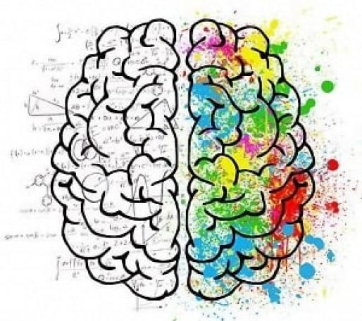 analisi sensoriale corso