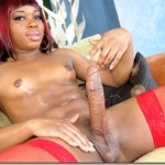 Sexy Black Shemale doing Solo Jack-off..