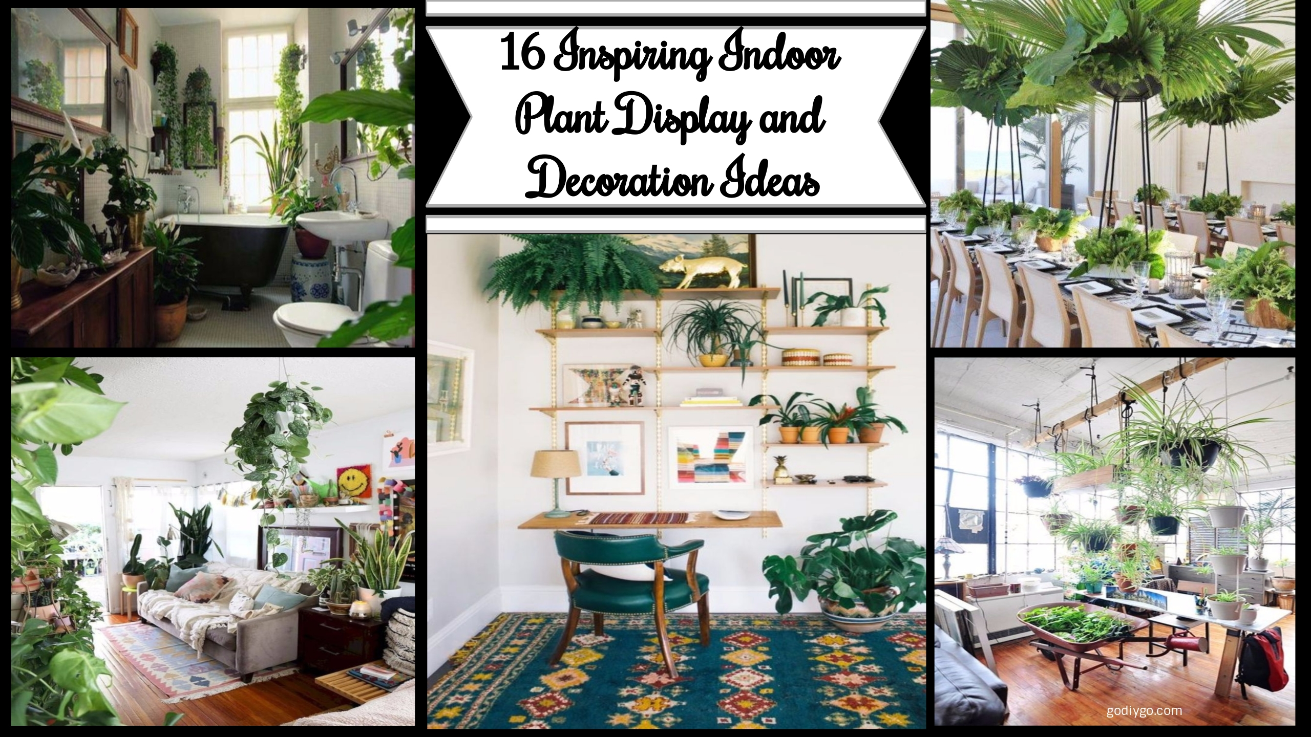 16 Inspiring Indoor Plant Display And Decoration Ideas
