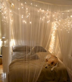 Fairy lights ideas for holiday decorating (38)