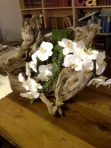 Ideas to arrange your succulent with driftwood 14
