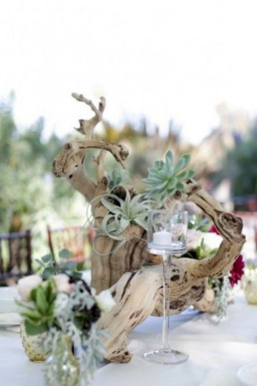 Ideas to arrange your succulent with driftwood 53