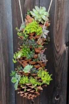 Indoor hanging planters you can make yourself 14