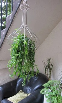 Indoor hanging planters you can make yourself 24