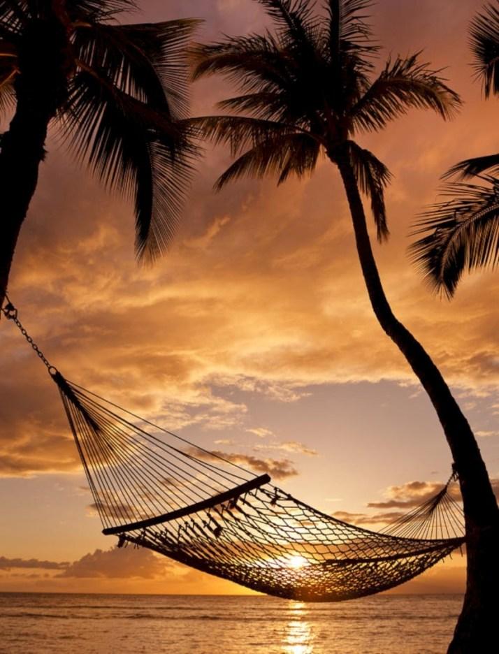 Unique hammock to take a nap (21)