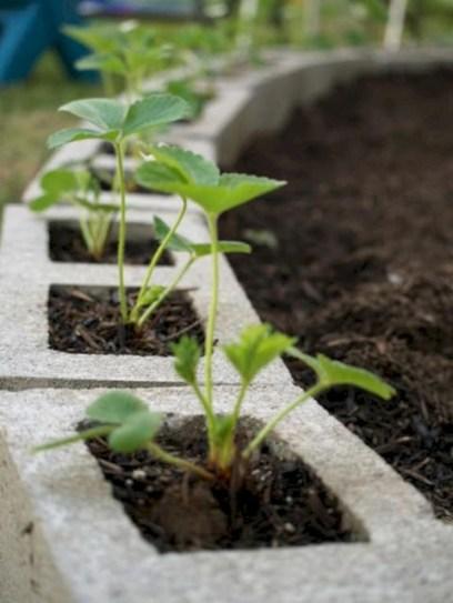 Ways to decorate your garden using cinder blocks 38