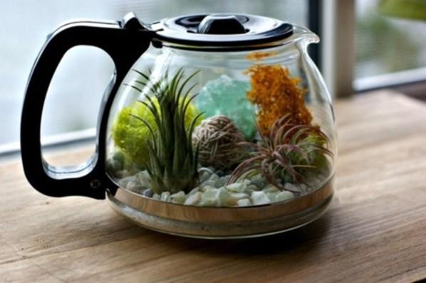 Amazing ways to planting terrarium 06