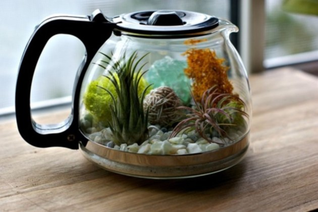 Amazing ways to planting terrarium 06