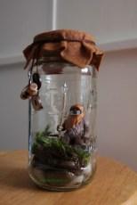 Amazing ways to planting terrarium 14