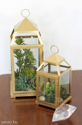Amazing ways to planting terrarium 17
