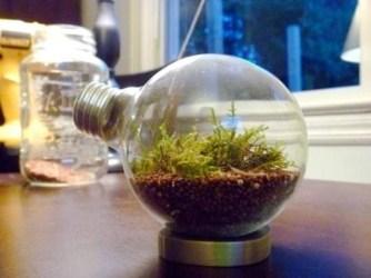 Amazing ways to planting terrarium 20