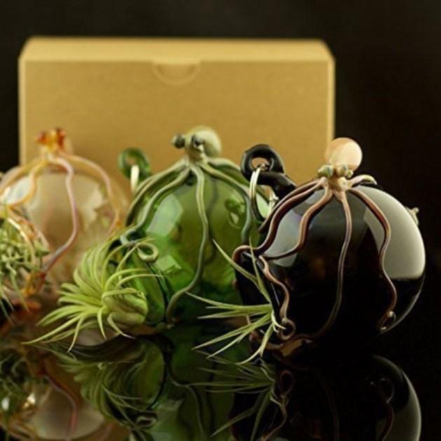 Amazing ways to planting terrarium 34