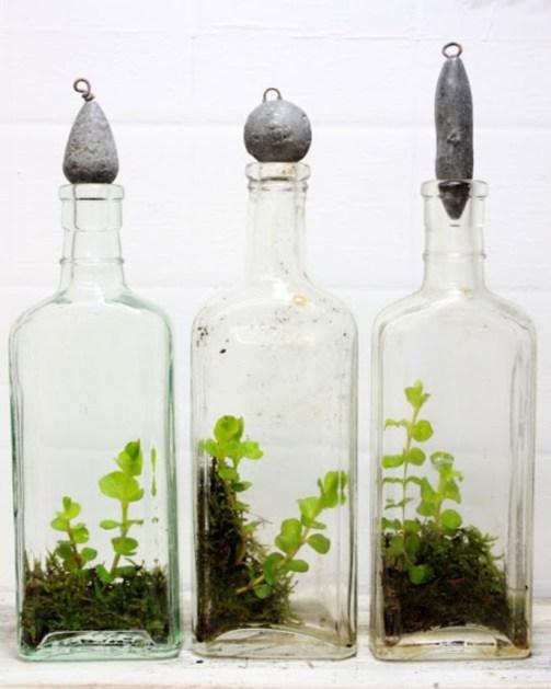 Amazing ways to planting terrarium 35