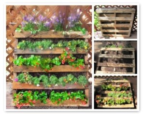Creative ways to grow strawberry at your garden 27