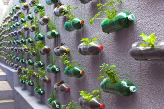 Creative ways to grow strawberry at your garden 34