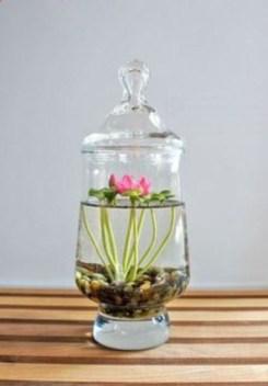 Diy indoor container water garden ideas 17