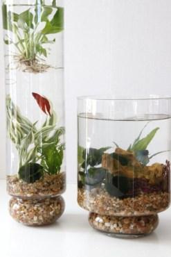 Diy indoor container water garden ideas 26