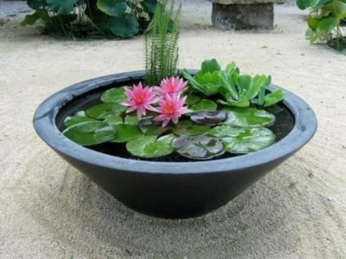 Diy indoor container water garden ideas 30