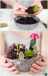 Diy indoor container water garden ideas 35