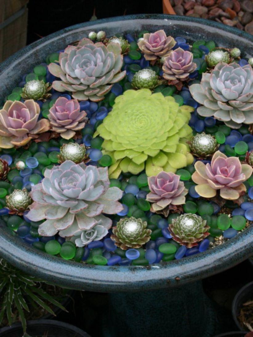 Diy indoor container water garden ideas 39