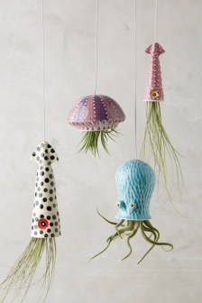 Diy indoor hanging planters 31