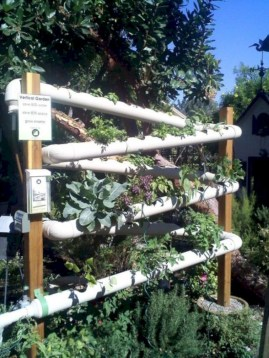 Diy hydroponic gardens for your small house 04