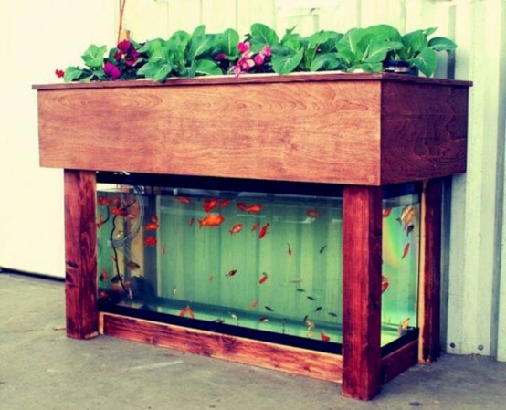 Diy hydroponic gardens for your small house 20