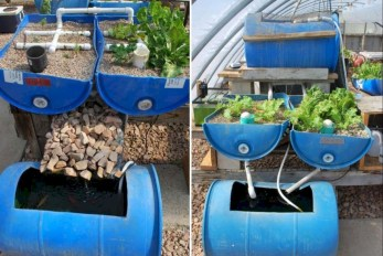 Diy hydroponic gardens for your small house 22