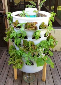 Diy hydroponic gardens for your small house 36